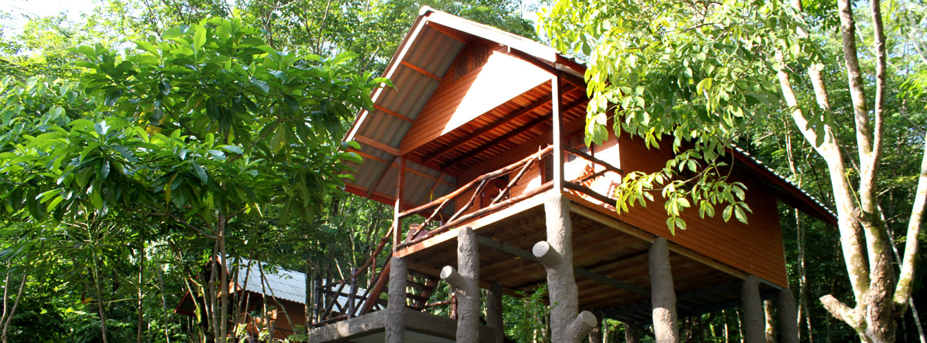 Thailand treehouse holidays in Thailand