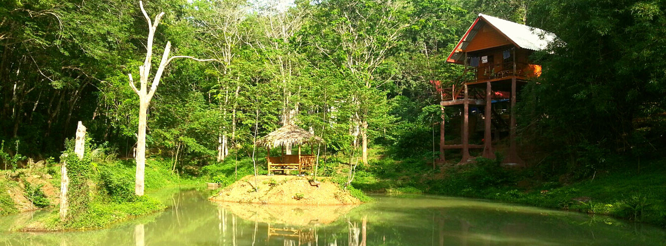 Thailand treehouse holidays